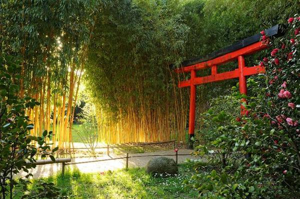 La bambouseraie d 39 anduze un jardin unique en europe - La bambouseraie a anduze ...